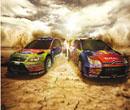 Egy kis csapatás az FIA World Rally Championshipben